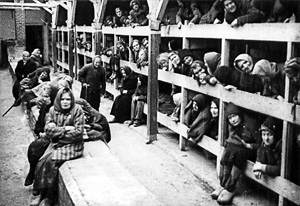 Auschwitz-Baracks